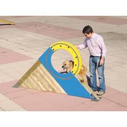 Roue circuit éducatif pour chiens