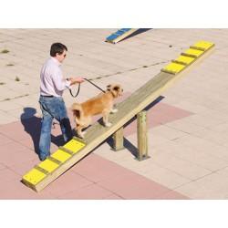 Balancier canin
