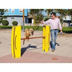 Saut en hauteur pour chiens